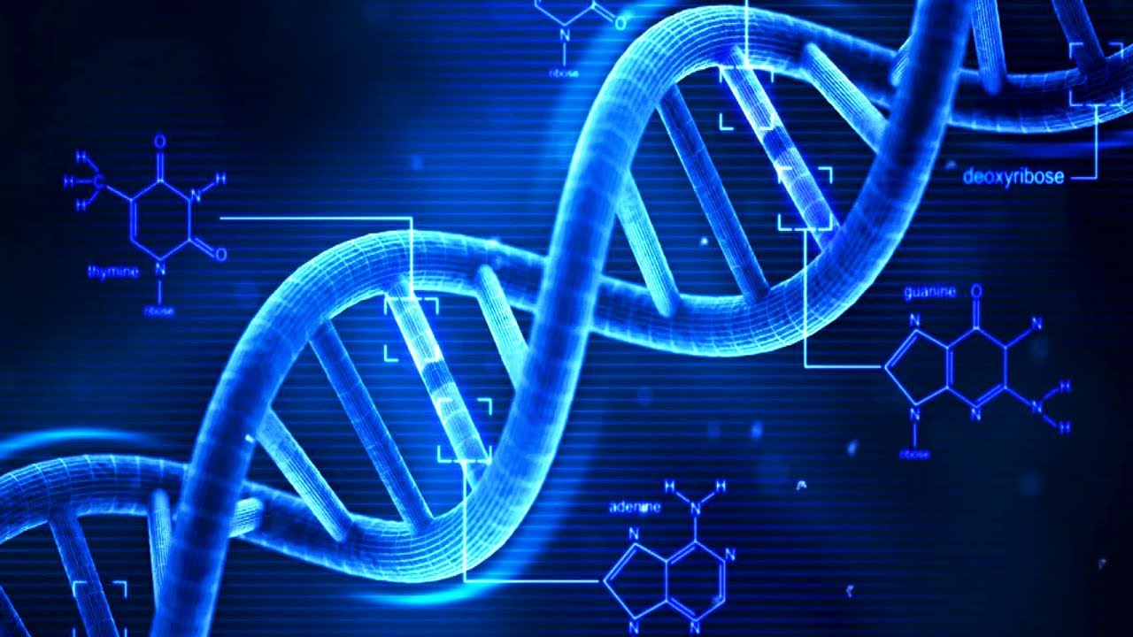 dna testing protecting the public or