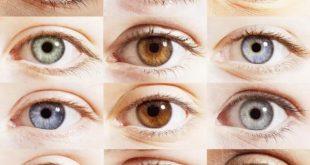 Почему глаза разного цвета и какой цвет самый редкий?